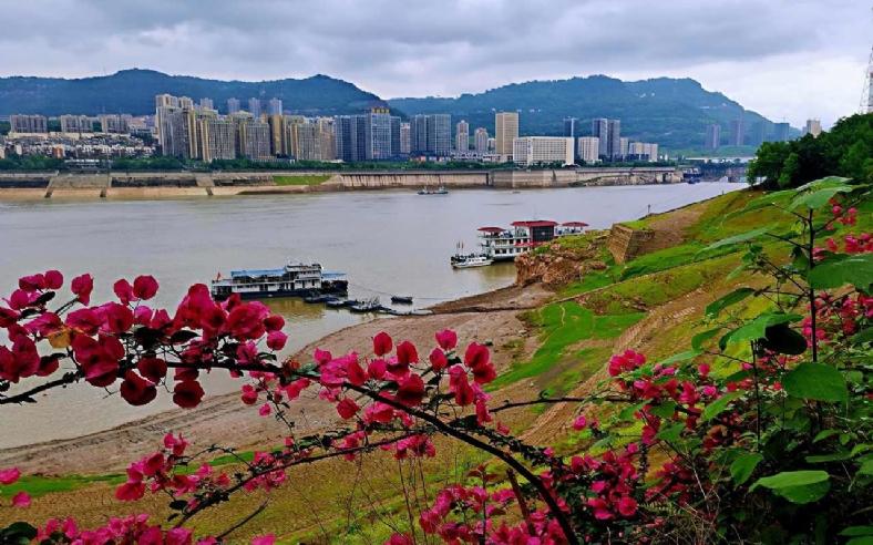 长江水位147米,从175未跌至147米。随意感受一下江边绿色。