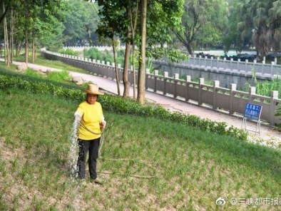 双河口龙宝河畔,正加紧升级改造中的滨河公园初现身影。