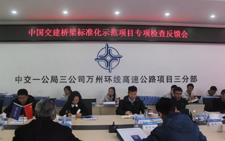 万州环线高速公路三分部迎接中国交建桥梁标准化示范项目专项检查